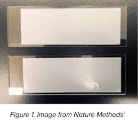 Polycarbonate Membrane Filters for the Seq-Well Platform